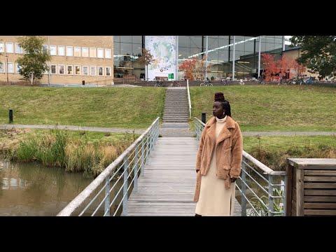 Film: Fältstudier i Kenya