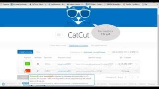 CAT CUT. Инструкция по заработку