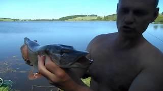 Отчеты - рыбалка в ульяновске