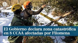 El Gobierno declara zona catastrófica en 8 comunidades afectadas por Filomena