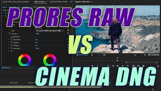 Что может PRORES RAW?  Сравним цветокоррекцию с CINEMA DNG RAW и REDCODE