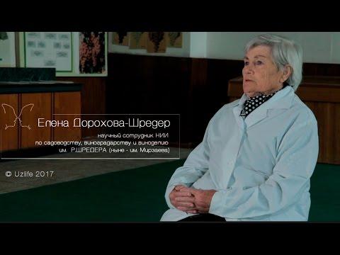 """Личность: Елена Дорохова-Шредер. """"Жизнь, посвященная процветанию"""""""