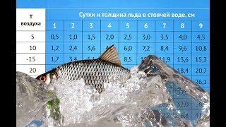 Толщина какого льда безопасная для рыбалки