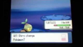 Grotle  - (Pokémon) - Turtwig evolves into Grotle (Pokemon Pearl)