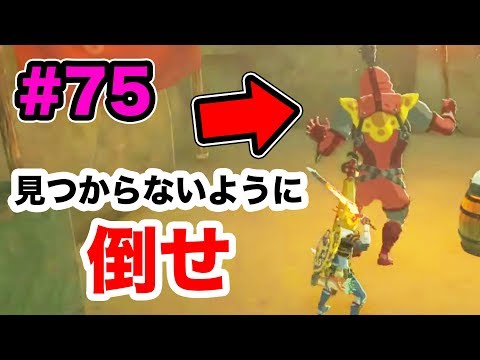 【ゼルダの伝説】イーガ団再び!敵に見つからないように撃破せよ!#75