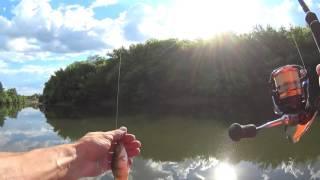 Чем ловить окуня в мутной воде