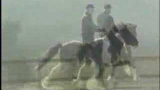 video of Smyrill vom Hülbehof