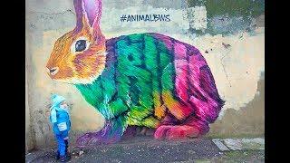 Новый Мурал в Одессе Яркий Цветной Кролик Туристическая Одесса Арт Обьект Street Art #animalbws