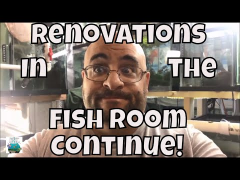 Aquarium Fishroom VLOG More Renovations in the Fish Room Moving Fish in the Fishroom