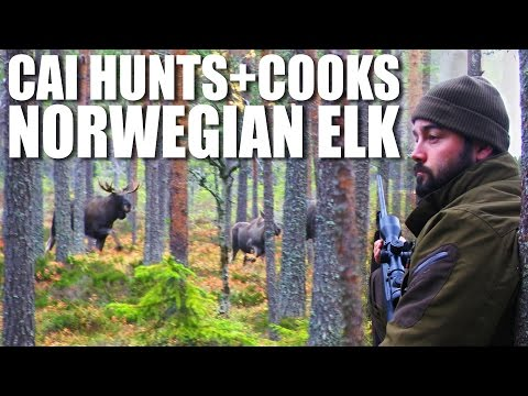 Cai Hunts+Cooks Norwegian Elk