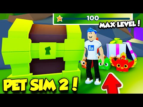 GETTING MAX LEVEL 100 And Opening The RAREST PET EGG In PET SIMULATOR 2! (Roblox)