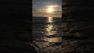 Волной утащило в море...
