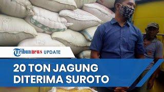 Akhirnya, Suroto Telah Terima Bantuan 20 Ton Jagung dari Jokowi Buntut Aksinya Membentang Poster