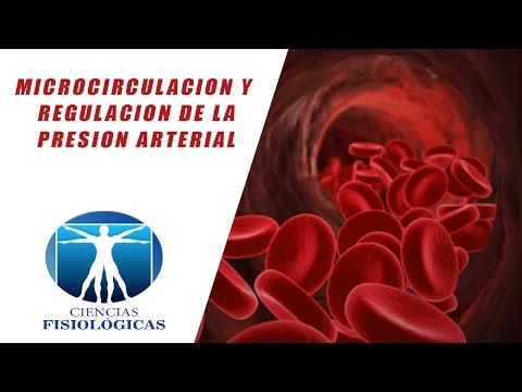 La congestión y la hipertensión