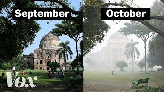 Thumbnail for What makes Delhi's air so deadly