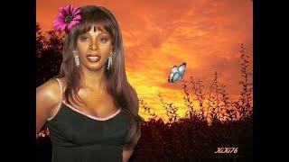 Donna Summer - Sometimes Like Butterflies (New Disco Classic) VP Dj Duck