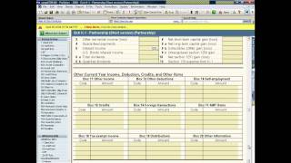 ProSeries QuickEntry Sheets