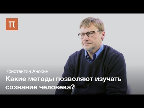 Признаки сознания в мозге - Константин Анохин