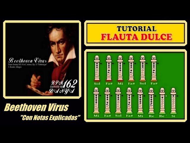 Beethoven-virus-en-flauta-dulce