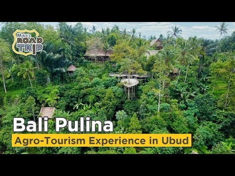 Video Bali Pulina agro tourism attraction in Ubud, Indonesia