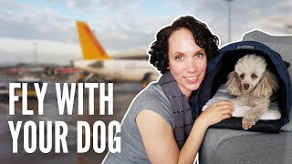 How to Take an INTERNATIONAL FLIGHT with a DOG | Plus EU Pet Passport Requirements