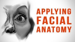 Applying Facial Anatomy To Caricature