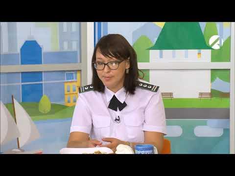 Участие главного специалиста - эксперта Управления Россельхознадзора в программе «Всем подъем» телеканала Астрахань-24