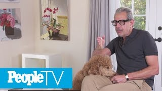 Jeff Goldblum's 'Protective' Dog Helped The Actor Prepare For This Movie Role | PeopleTV