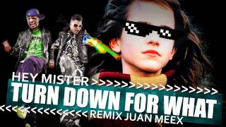Hey mister - turn down for what - remix juan meex - acapella