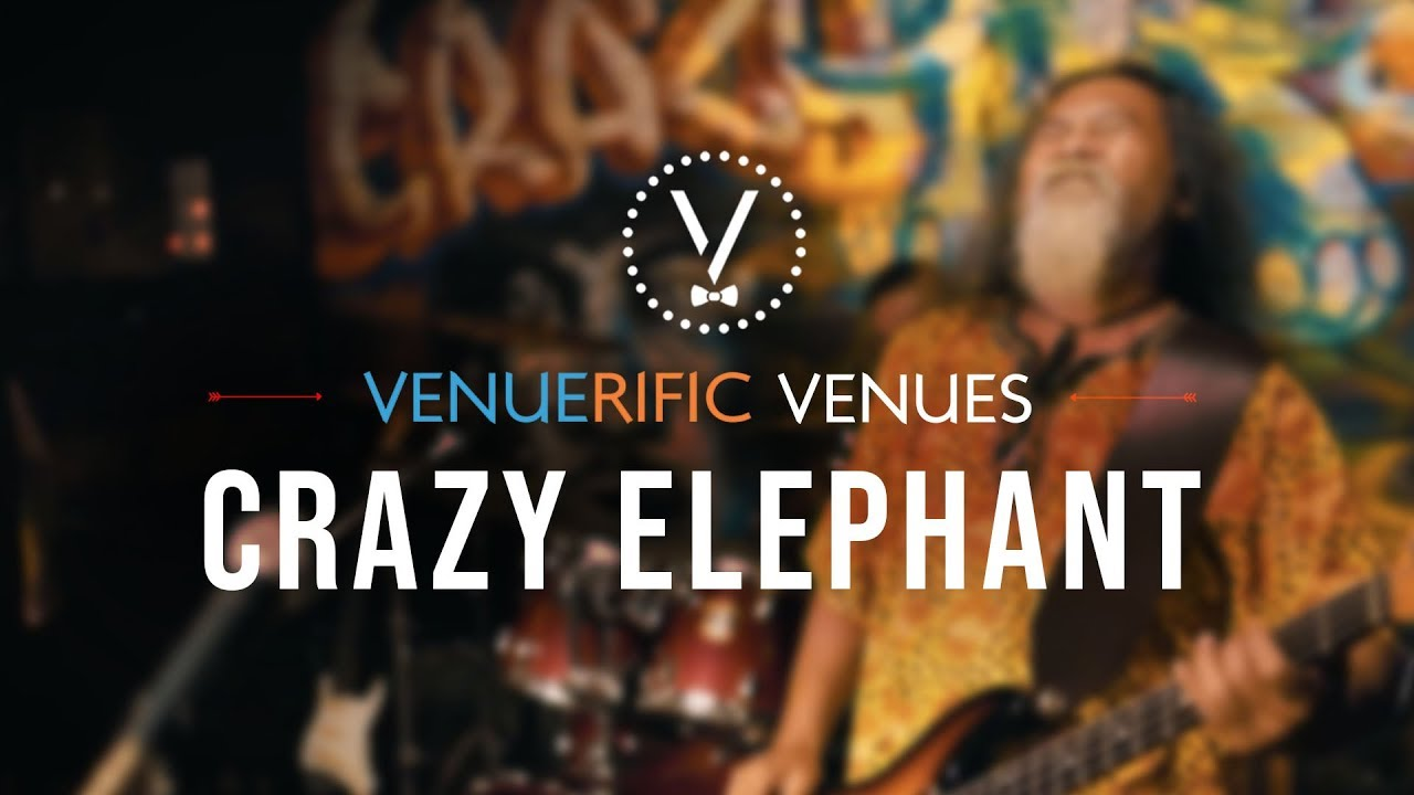 Crazy Elephant video preview