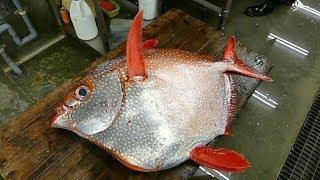 Японская Разделка - Гигантская Рыба Опах Япония Морепродукты.