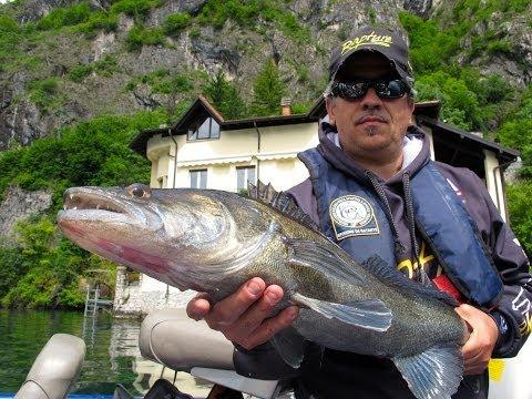 La pesca in Komi per aspettare in linea