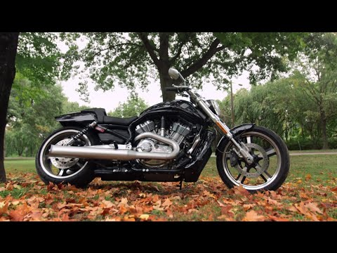 mp4 Harley V Rod, download Harley V Rod video klip Harley V Rod
