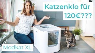 Modkat XL Katzenklo - Review und 3-Monats-Test