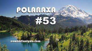 Polaraxa 53 – Złowrogie lasy
