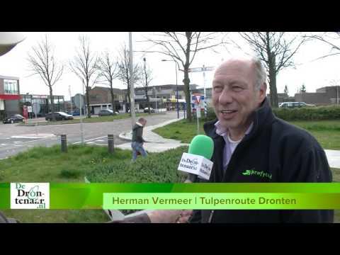 VIDEO | Nu ook Swifterbant een mozaïek heeft kan Tulpenroute Dronten beginnen