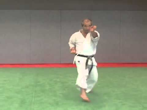 14. Jitte Wado Ryu