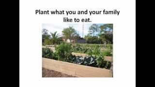 Plant Selection & Layout / Your Florida Vegetable Garden
