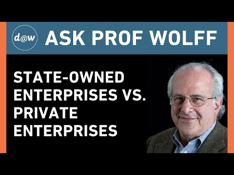 AskProfWolff: State-Owned Enterprises vs. Private Enterprises
