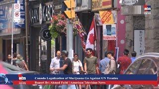 Canada's Legalization of Marijuana Goes Against UN Treaties