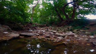 """dreams"" slow flow flying thru the creeks/trails/& treetops. cinematic fpv. /no reelsteady / cinerat"
