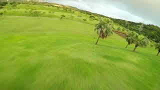 FPV flying in Garden of Eden