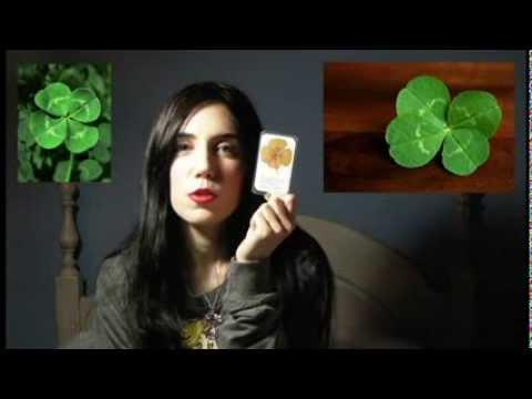 ¿Cómo ver a las hadas? (Folclore y leyendas) - Julia Pons Montoro