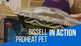 Bissell Proheat Pet Steam Cleaner - In action