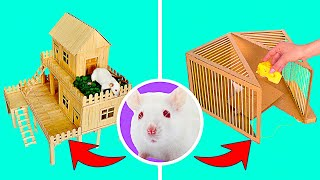 DIY Rat Trap And Rat House Out Of Cardboard And Popsicle Sticks