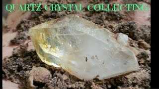 Quartz Crystal Digging! Virginia 2015