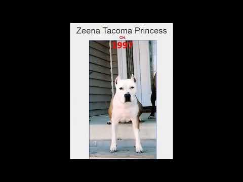 Tacoma Bloodline 1927 a 2016