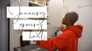 Grocery Haul for One   $100 Monthly Budget   STACEY FLOWERS