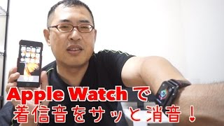 Apple Watchで着信音をサッと消音!