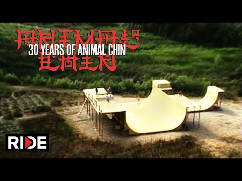 30 Years of Animal Chin - Building The Chin Ramp